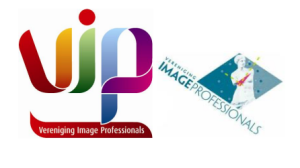 Logo Image professionals